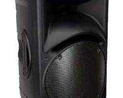 Mackie C300z Loudspeaker